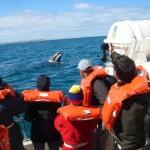 Um saltinho a Puerto Madryn