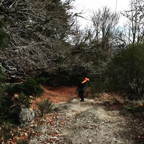 December 2015 - trekking in Fall Wonderland