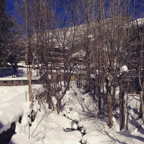 February 2015 - we went skiing